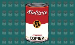 WPMU DEV - Multisite Content Copier