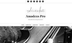 ThemeIsle - Amadeus Pro