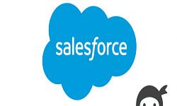 Ninja Forms - Salesforce CRM Addon