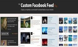 Custom Facebook Feed Pro